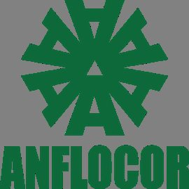 ANFLO Management and Investment Corporation
