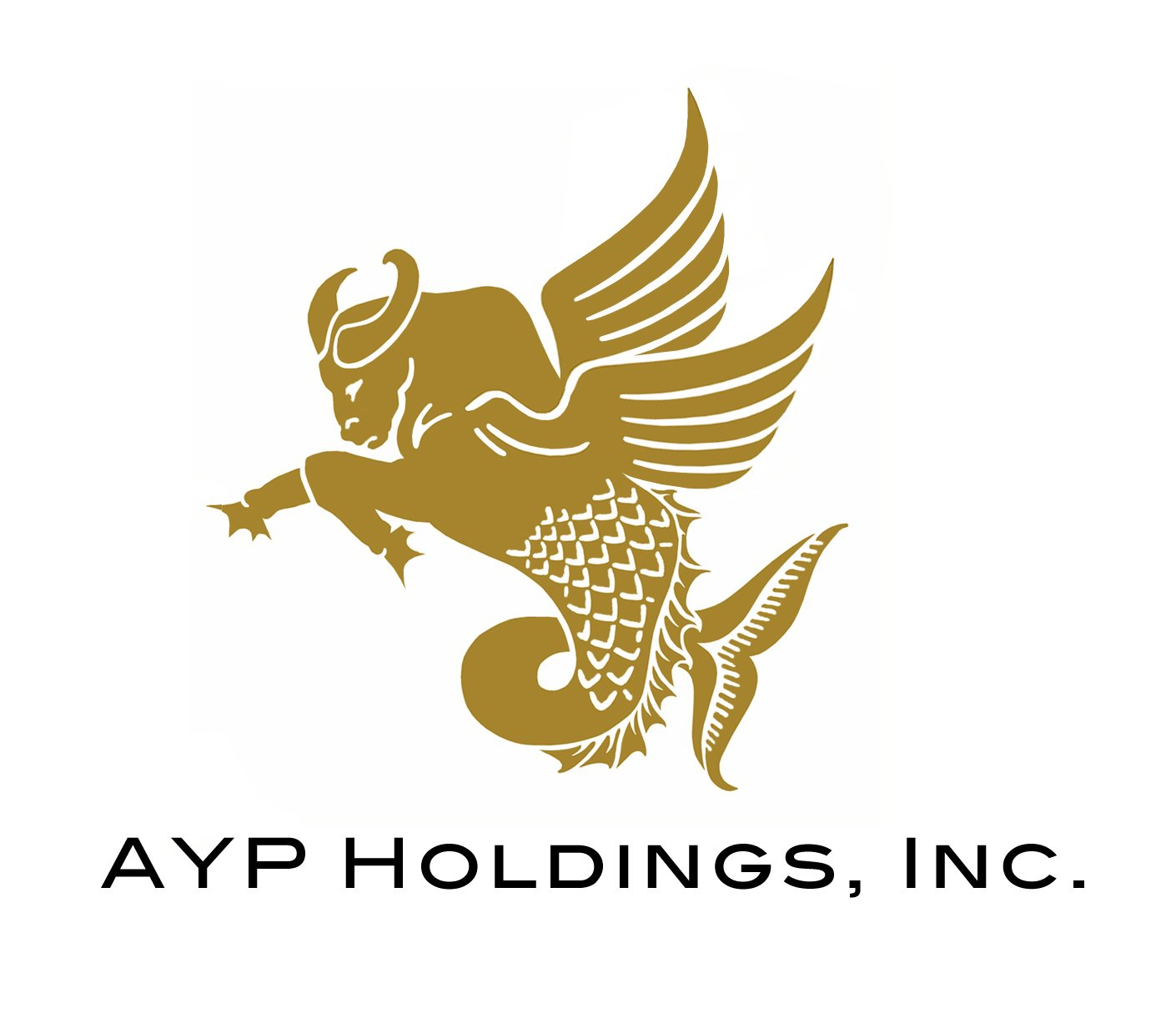 AYP Holdings Inc. (Wind and Wave Davao)