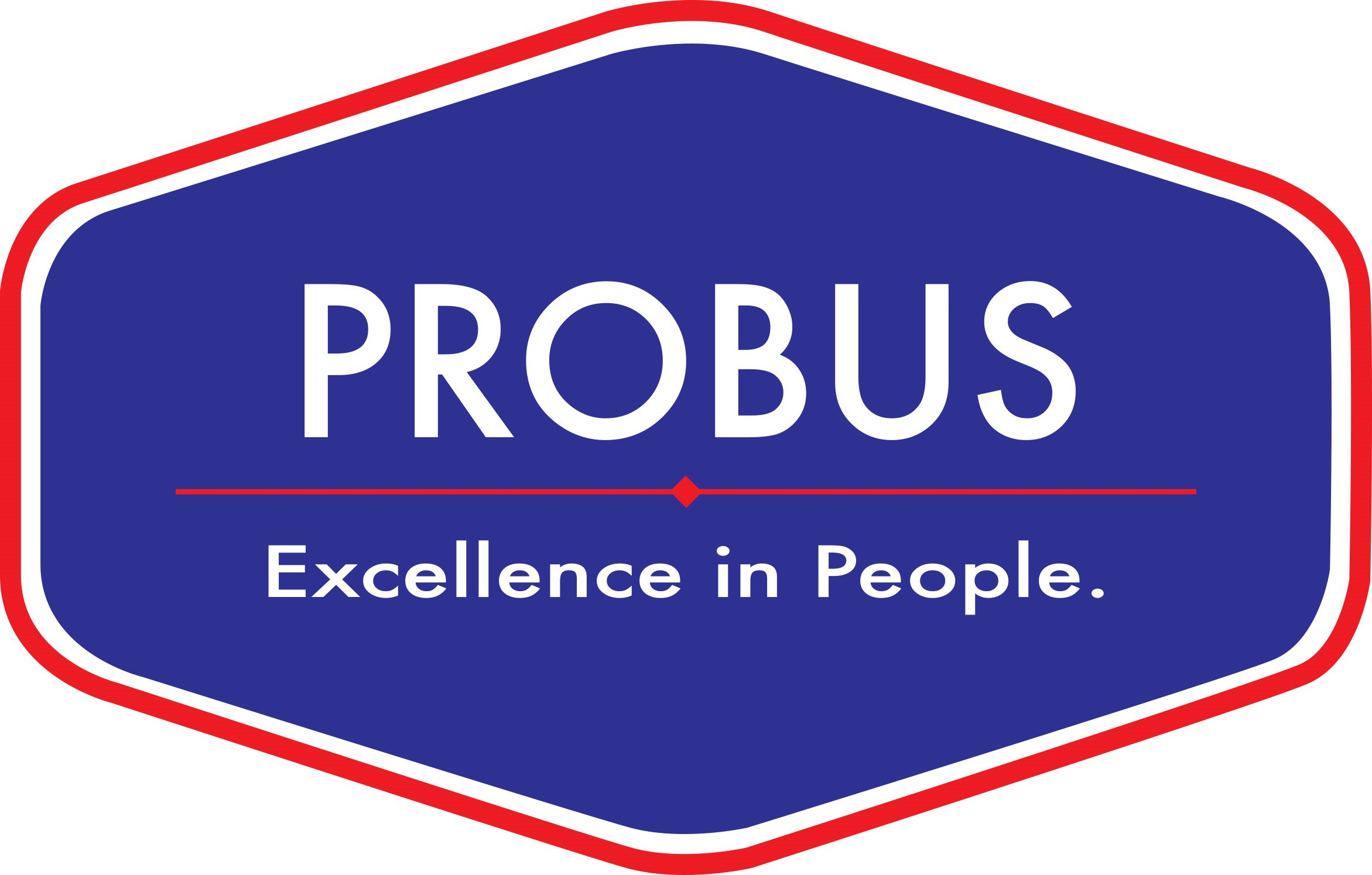 PROBUS BUSINESS CONSULTING