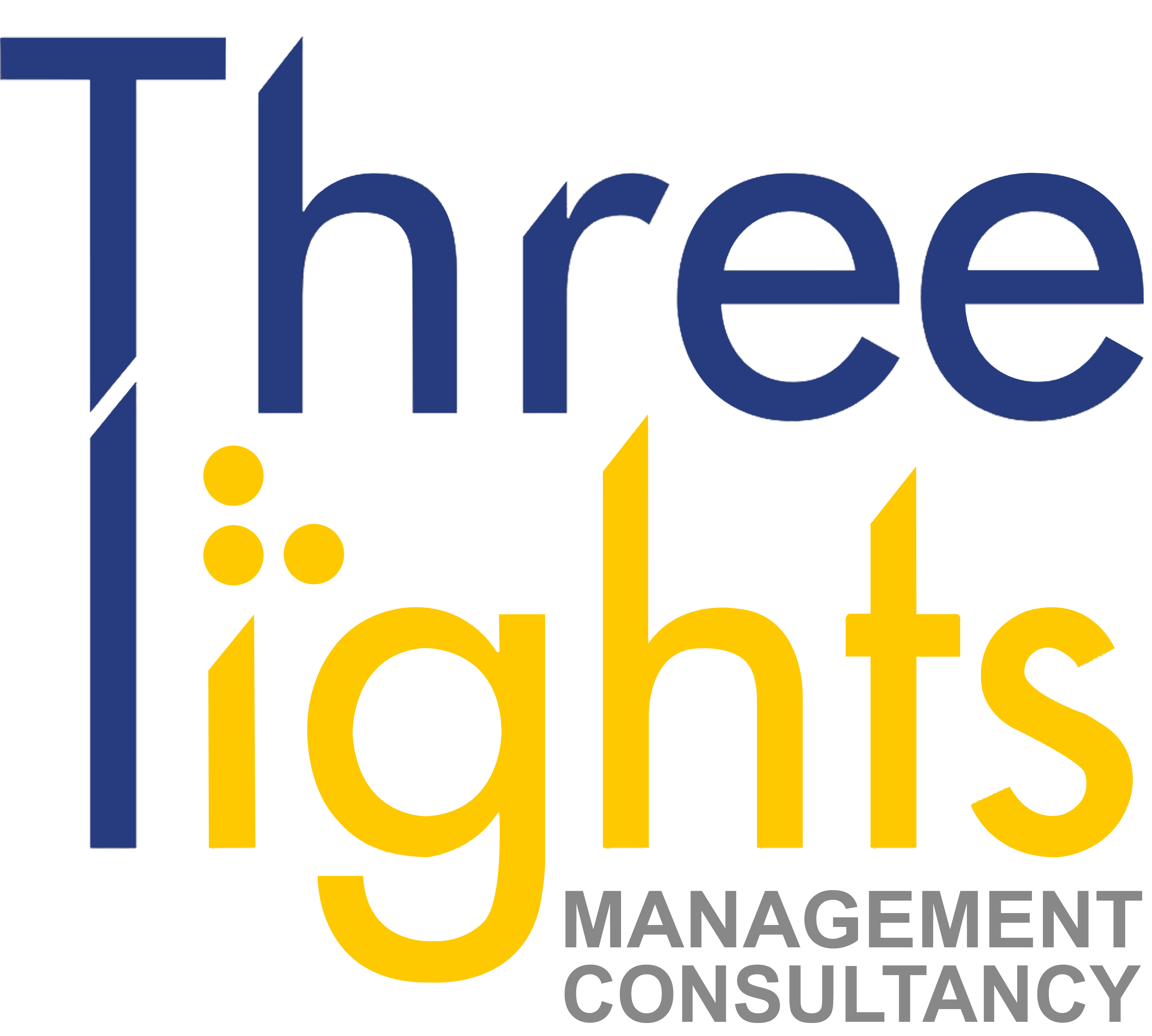 Three Lights Management and Consultancy Corporation