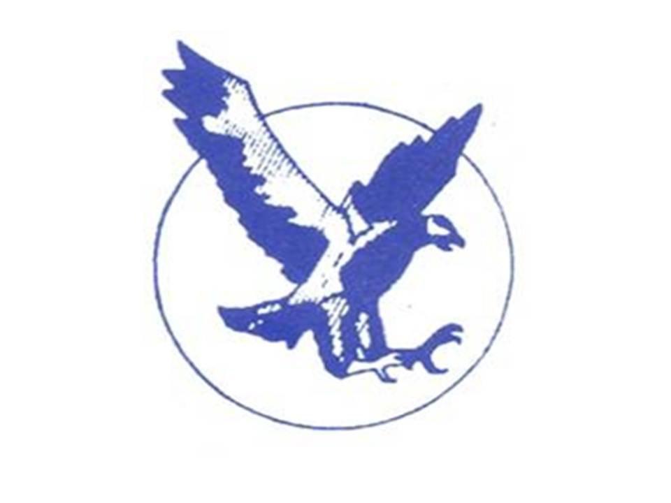 Skyhawk Security Services Inc.