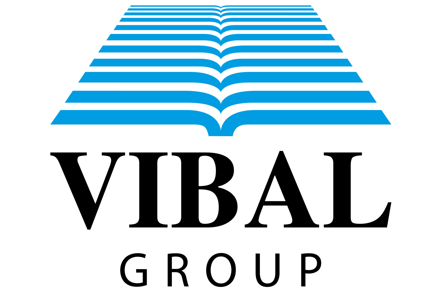 Vibal Group Inc.