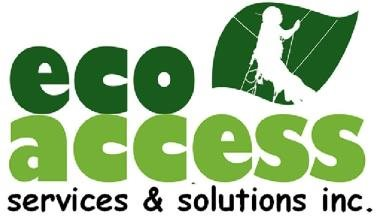 Eco Access Systems & Solutions Inc (EASSI)