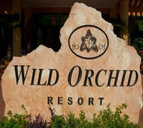 Orchid Group of Companies