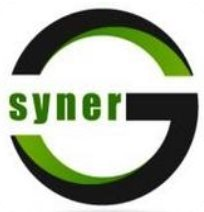 Syner G Outsourcing Inc.