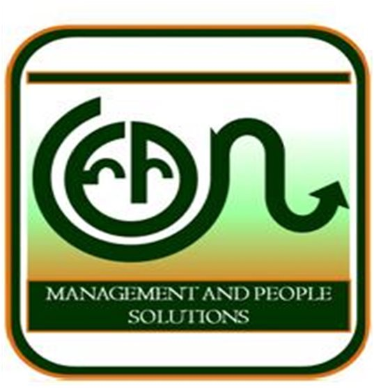 Lean Management and People Solutions Inc.