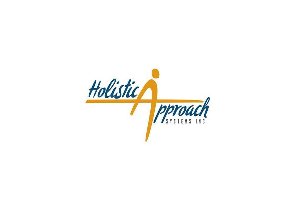 HOLISTIC APPROACH SYSTEMS INC