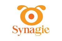 Synagie Inc.
